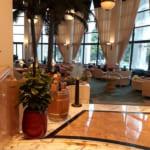 Cung Cấp Cây Nội Thất Khách Sạn Daewoo Hà Nội